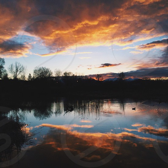brown clouds above body of water near silhouette of a tree photo