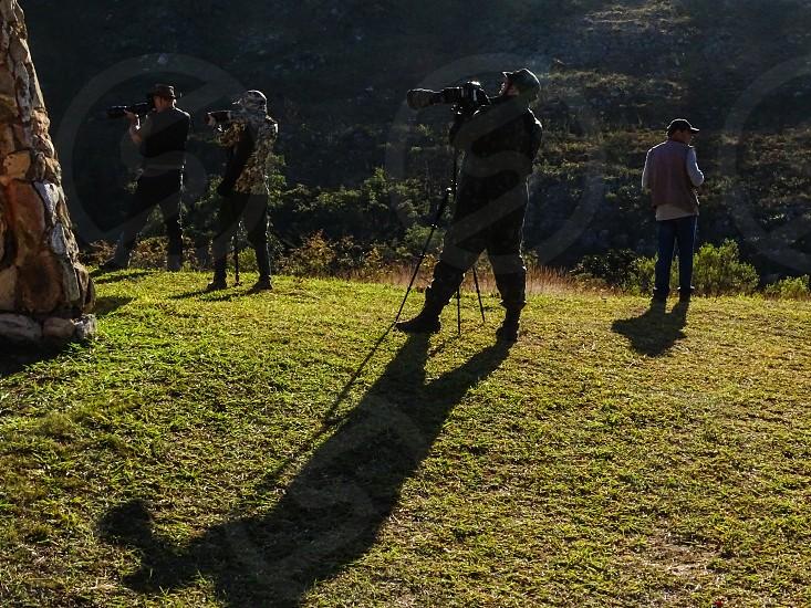 Birdwatching in Serra da Canastra MG Brazil photo