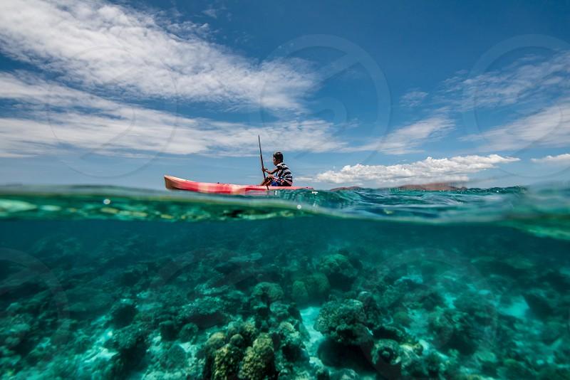 underwater scenery at Coron Palawan Philippines photo