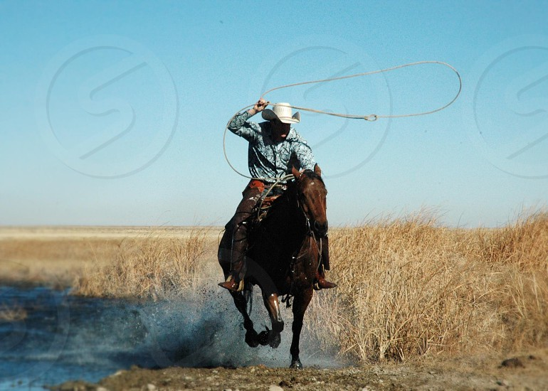 Cowboy rural rustic country western rope lasso horse rodeo ride saddle water gallop splash  photo