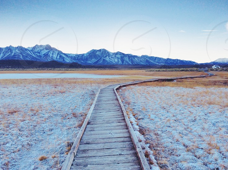 brown wood track going to mountain photo
