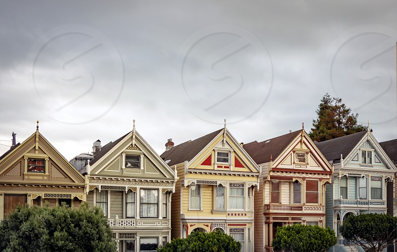 View of the famous Painted Ladies in Alamo Square in San Francisco. Victorian and Edwardian houses repainted photo