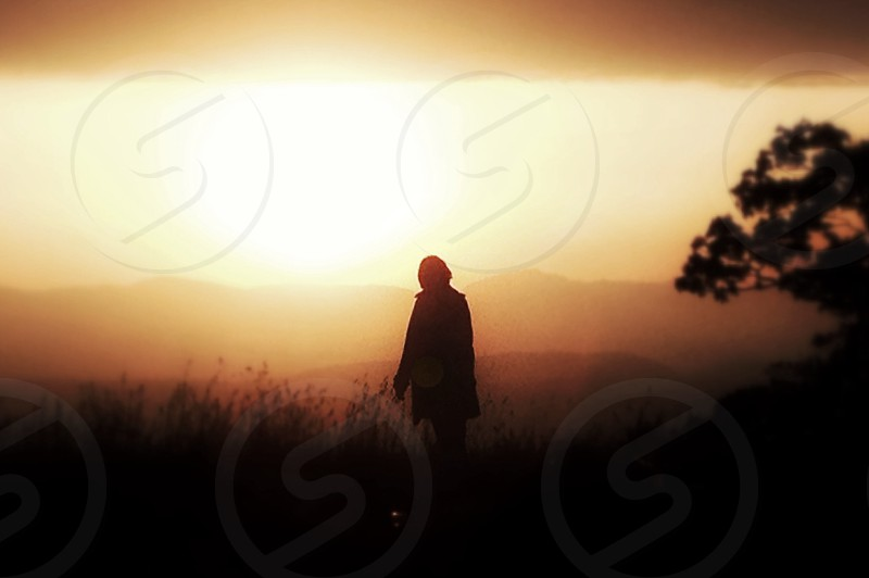 man on field silhouette photography photo