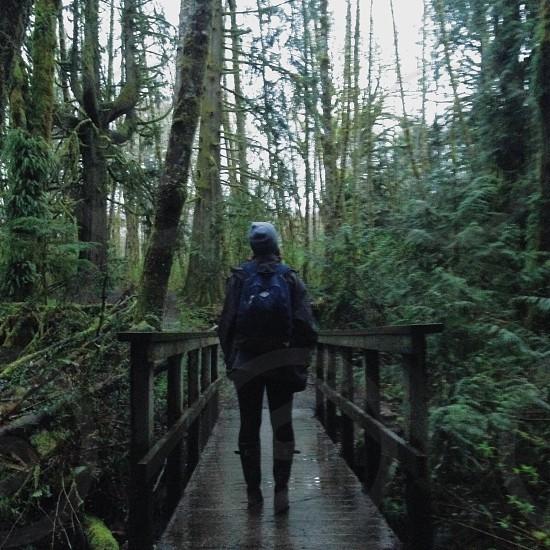 Rainy Hike photo