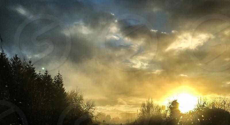 Sunrise fog road photo