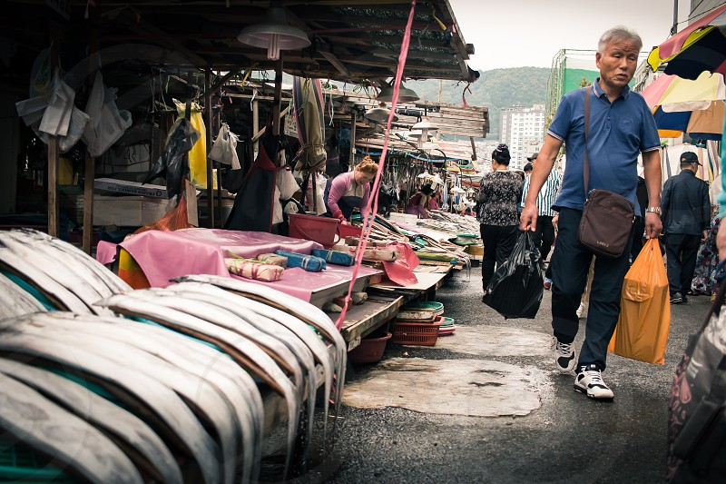 Busan fish market. South Korea. photo