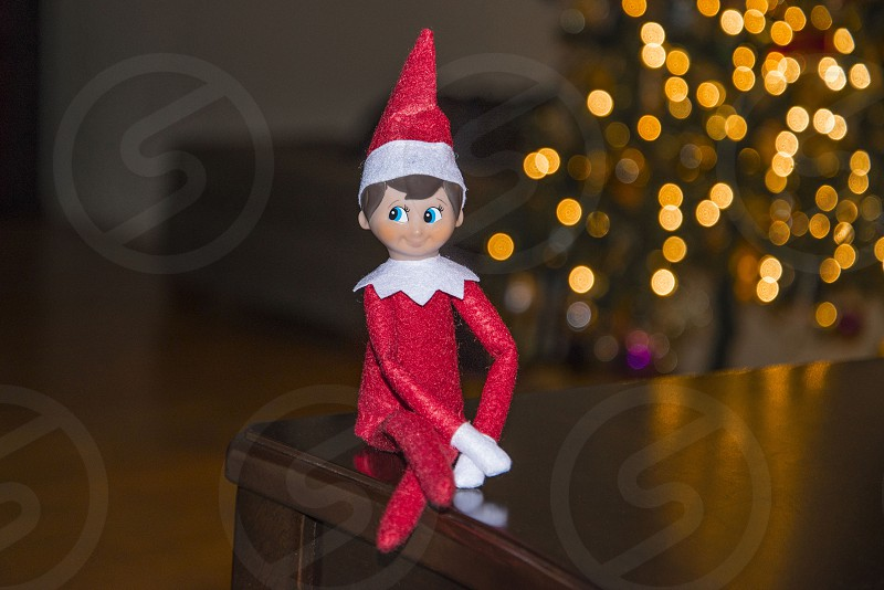 Elf Will photo