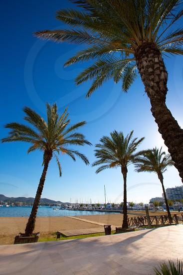 Ibiza san Antonio Abad de Portmany beach in Balearic Islands of spain photo