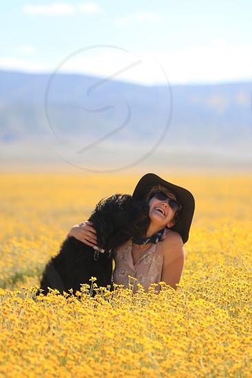 xl sized long coated black dog kissing a woman photo