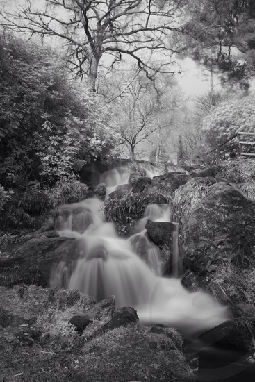 Waterfall Infrared  photo