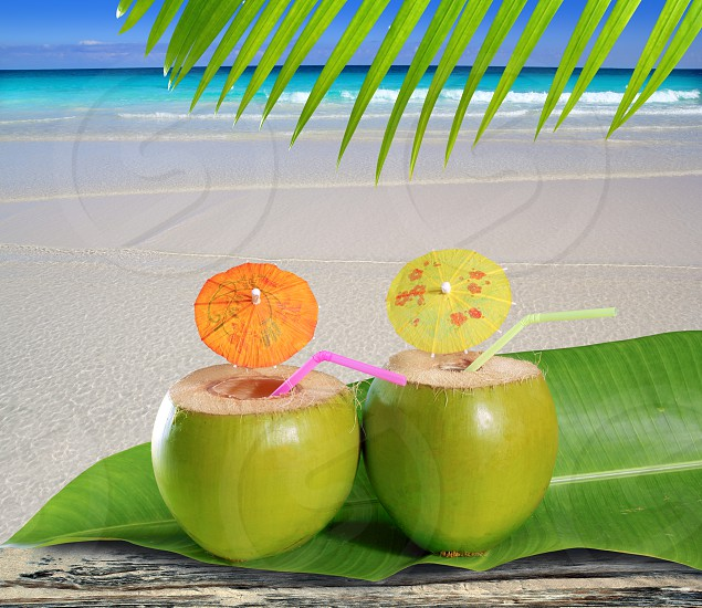 fresh tender green coconuts straw cocktails on tropical caribbean beach photo
