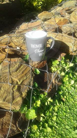 coffe mug in africa photo