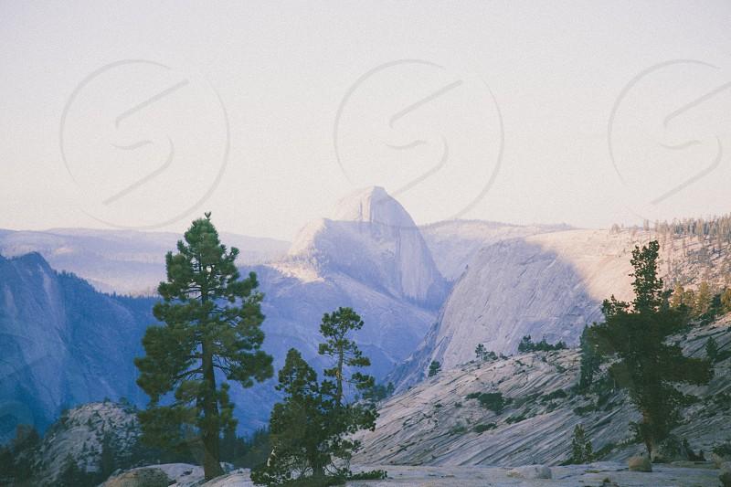 white mountain behind green pine trees photo