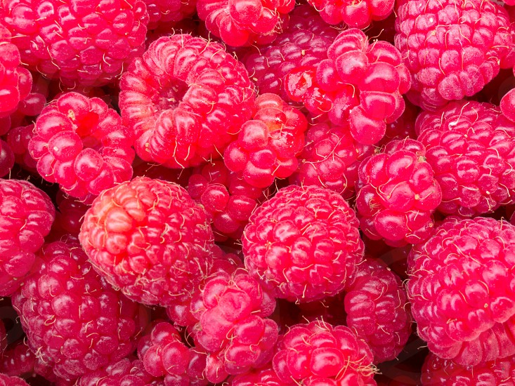 Tasty juicy ripe raspberries background texture pattern photo