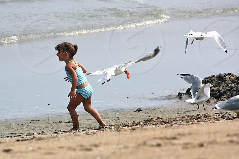Chasing Seagulls at Salisbury Beach photo