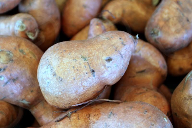 Sweet potatoes at farmers market photo