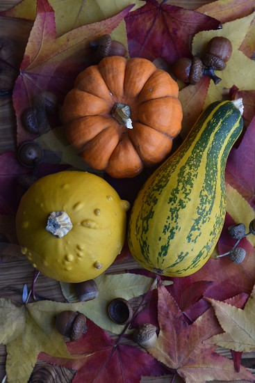 three assorted vegetables with walnut photo