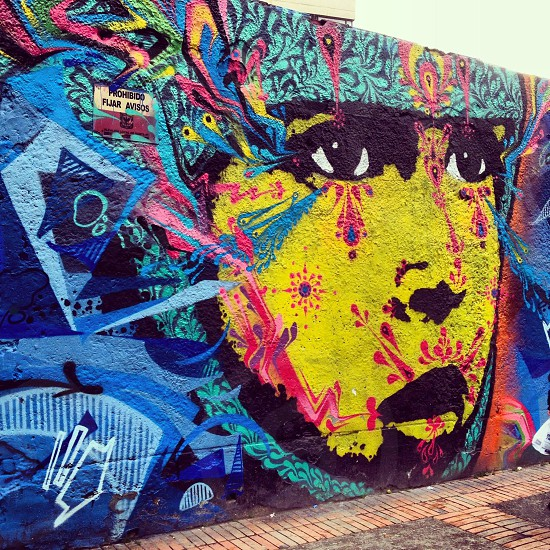 Bogotá street art (artist: Stinkfsh) photo