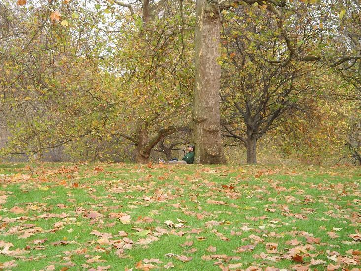 Sleeping in Park London photo