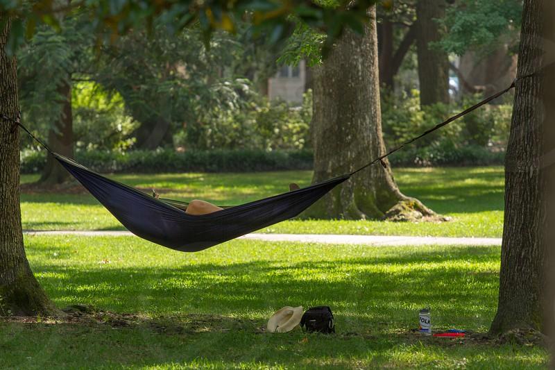 Relaxing in a hammock in Forsyth Park.  Savannah Georgia photo