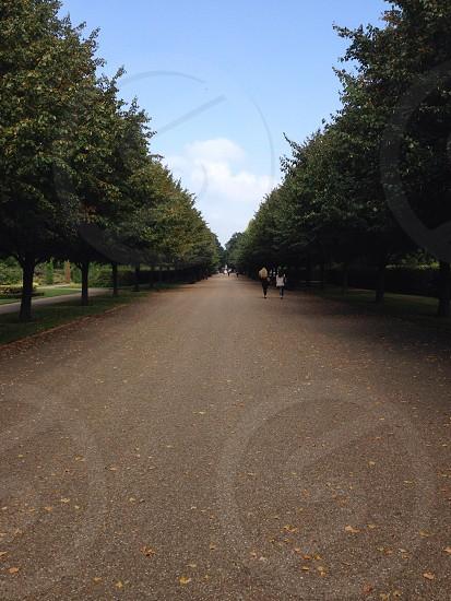 Regent's Park Walkway. photo