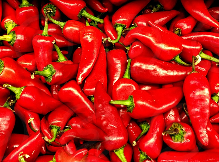 Red Chile peppers cover the image from side to side photo