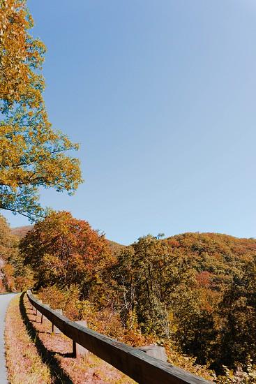 Blue Ridge Parkway - North Carolina. photo