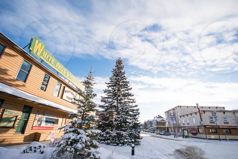 Beautiful Winter Scene Whitehorse Yukon  photo