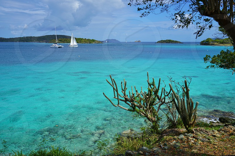 Virgin Islands National Park - St John US Virgin Islands photo