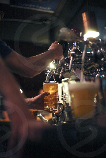 Barman filling the beer photo