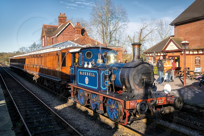 Bluebell Steam Train at Sheffield Park Station photo