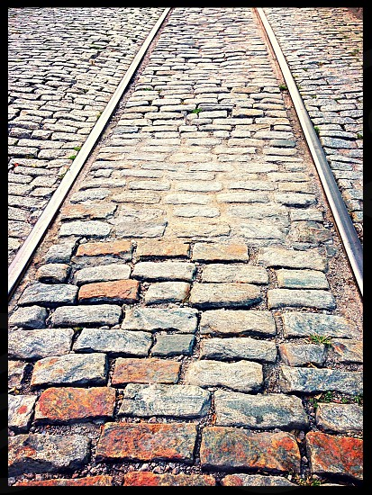 Cobblestone streets Savannah  photo