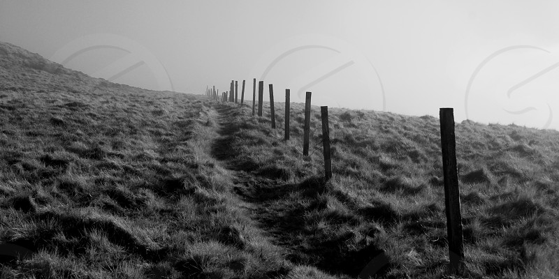 Fencepost's running along side a path disappearing into the mist.  photo