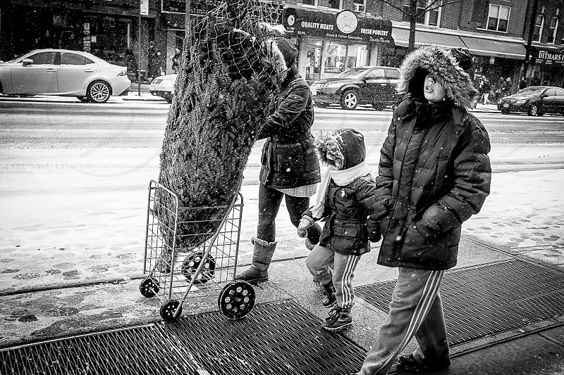 Winter Christmas Xmas tree Snow nyc urban holidays Kids cold day photo
