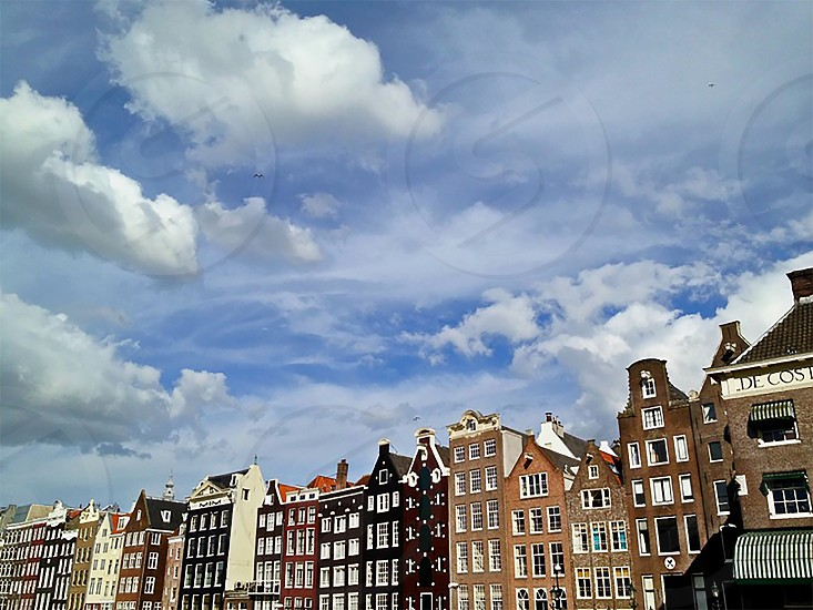 Amsterdam in the summer photo