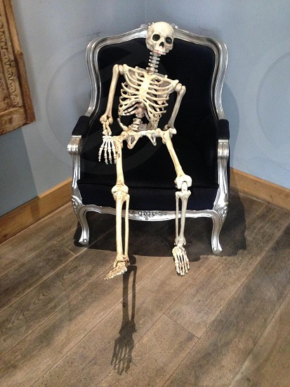 Skeleton Halloween  photo