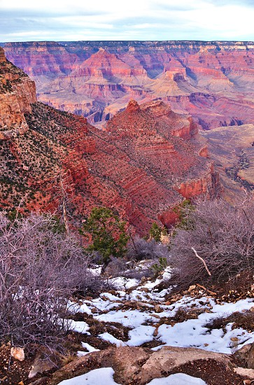 The Grand Canyon seen from Arizona United States at sunset photo