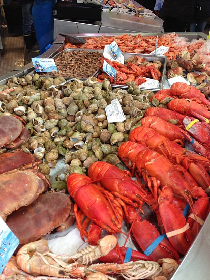 Sea food stall market place with great looking lobsters photo