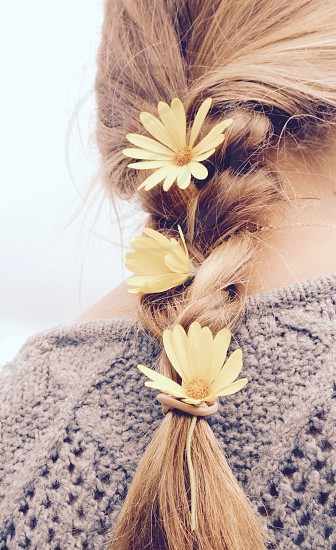 Daisies in your Hair photo