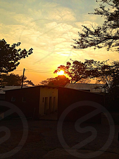 Outside nature sunrise morning sun trees africa houses sky photo