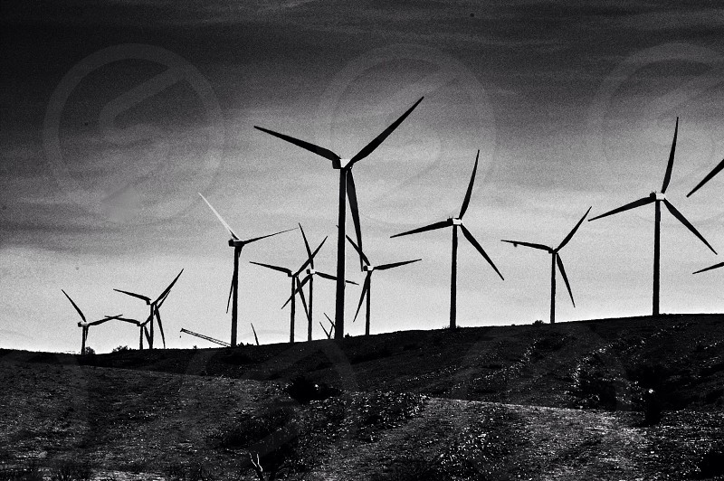black and white photo of wind turbines photo