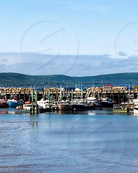 Boatsdockfishing boatocean photo