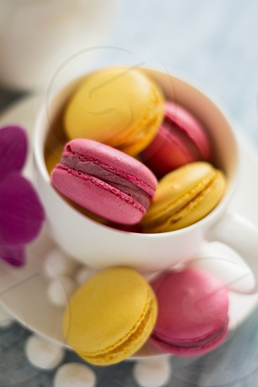 macaroons cookies food sweets selective focus spring color pink yellow photo