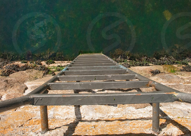 Step Ladder to the Water photo