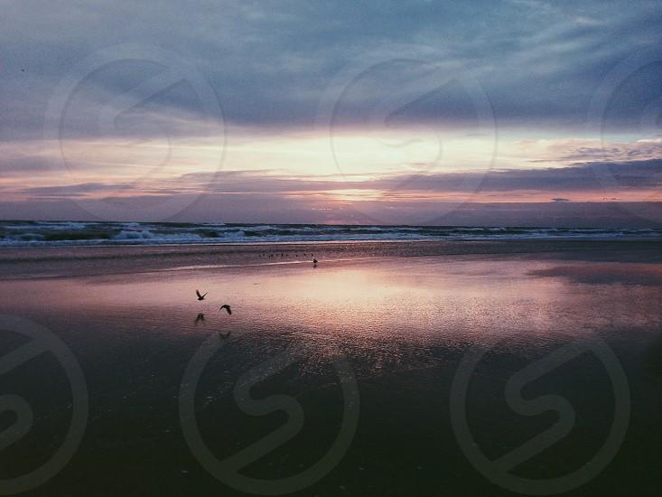 Sunrise Daytona Florida photo