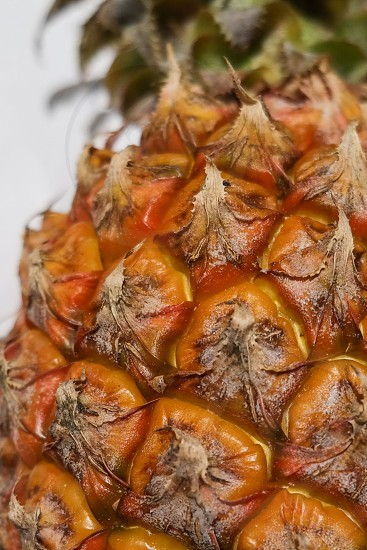 close up of a pineapple photo