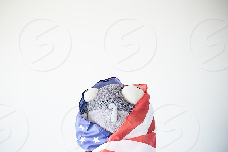 gray plush covered with american flag photo