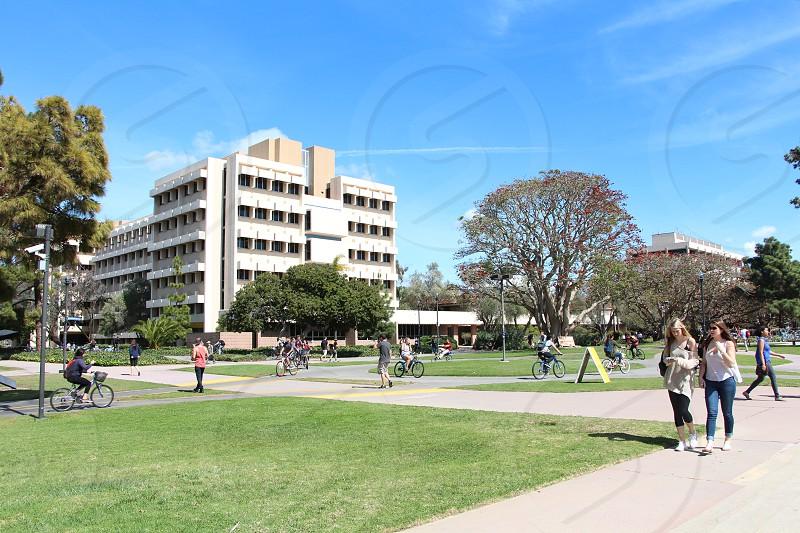 University of California Santa Barbara (UCSB) photo