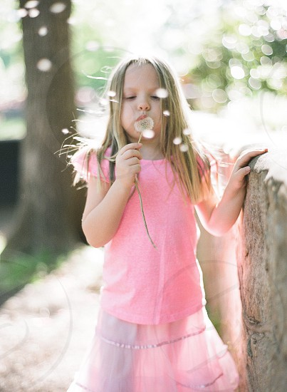 Point of view girl dandelion day fun park back lit play family  photo