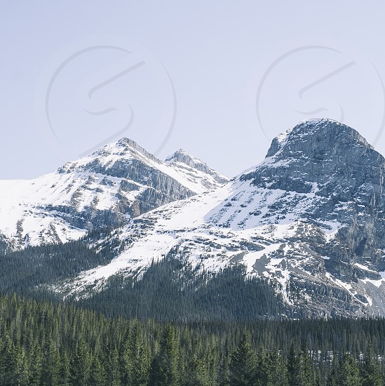 Nature mountain forest Banff Canada Sky photo